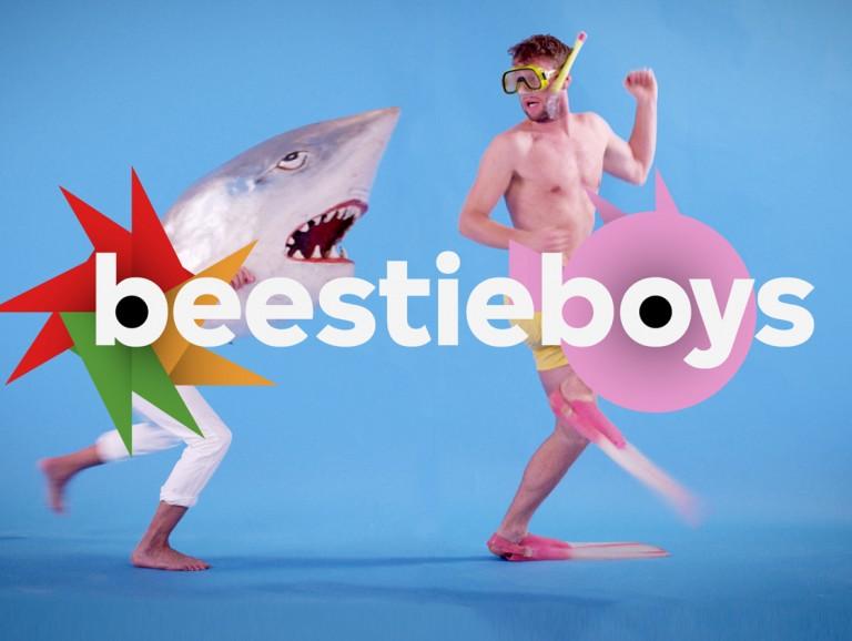 Beestieboys<br /> <br />